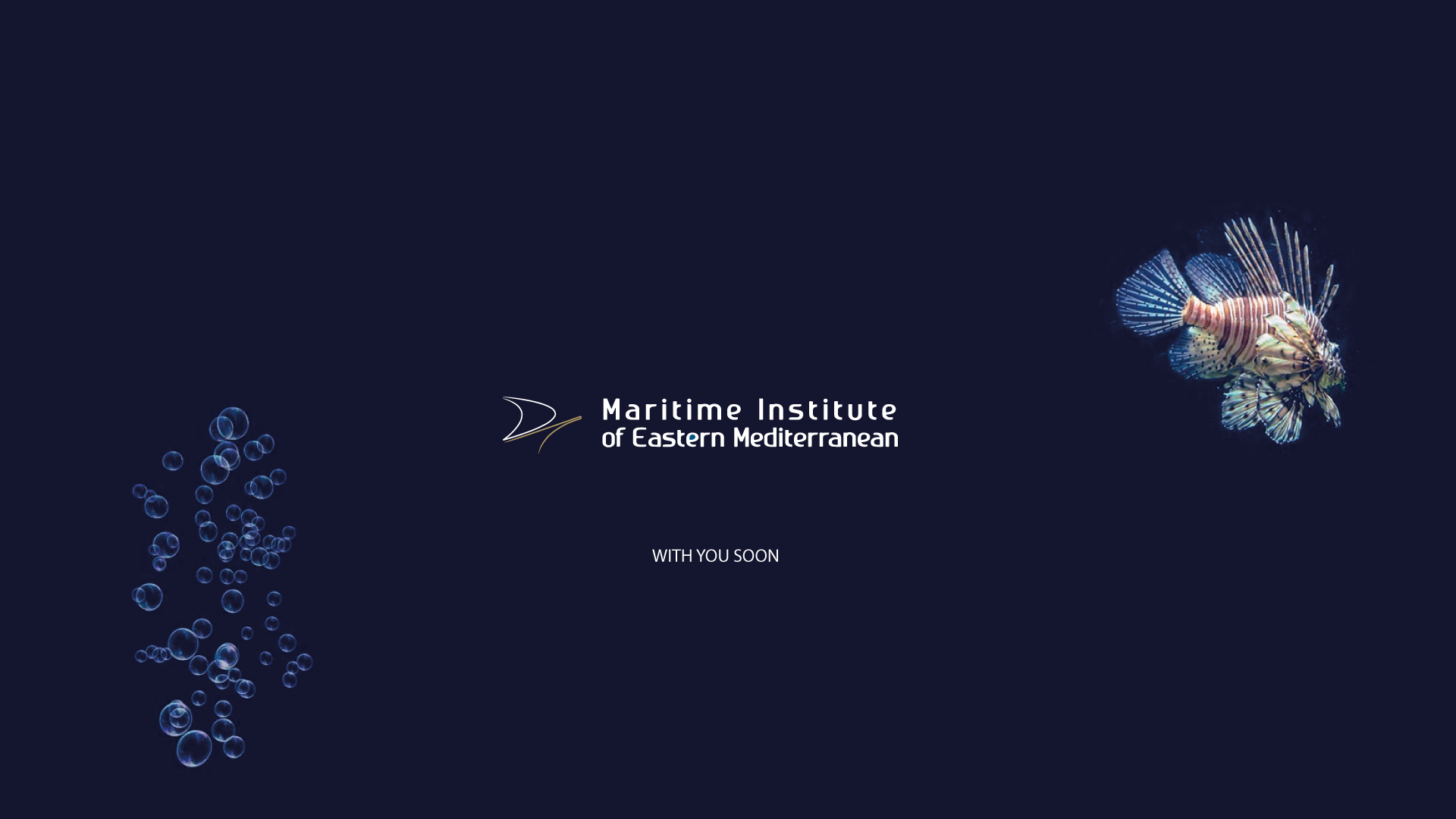 Marinem-website_soon